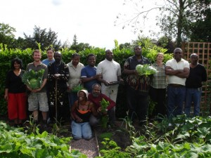 The ACCI Gardening Group